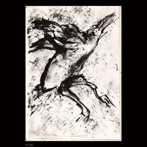 Oiseaux-01XX