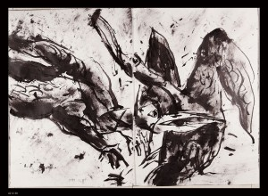 Oiseaux-11XX