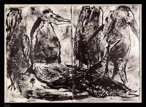 Oiseaux-15XX